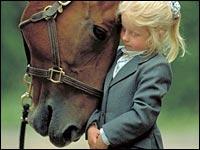 Stato d'animo dei cavalli