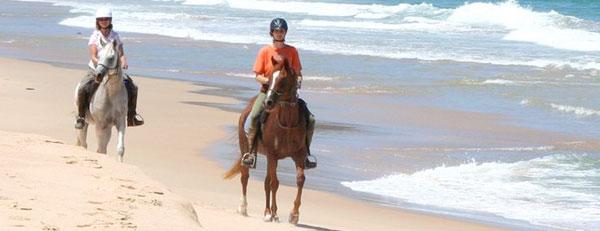 Uomo e Cavallo un'amore eterno