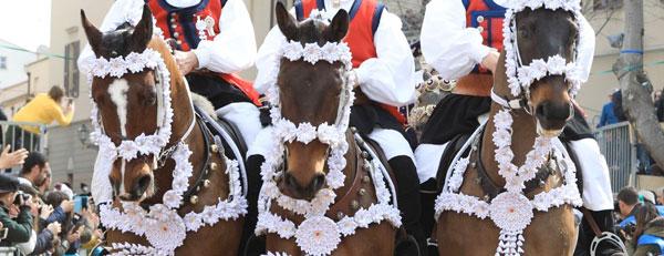 Bardature per i Cavalli